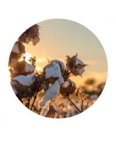 Puro Cotton