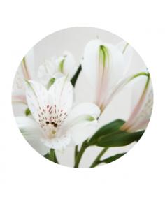 Rosas blancas y Azahar